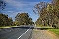 Sturt Highway - Forest Hill.jpg