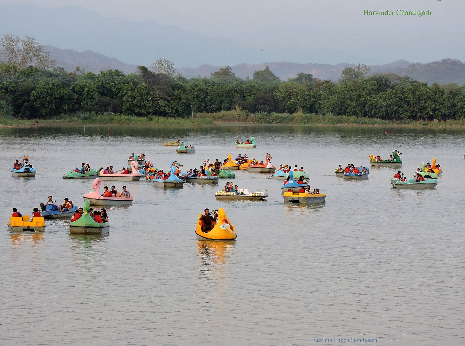 sukhna choe Forests chandigarh has 3245 hectares under forest and most of it is hilly the  forest areas are mostly around sukhna lake, sukhna choe and patiala ki rao.