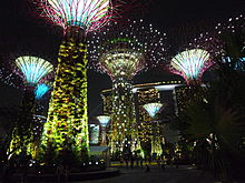 a night view of the supertrees - Garden By The Bay Flower Show