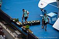 Sydney International Tennis WTA (39950540123).jpg