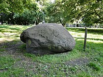 Szczecin Park Zeromskiego glaz narzutowy Adam pomnik przyrody.jpg