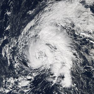Tropical Storm Zeta - Tropical Storm Zeta shortly after being named on December 30