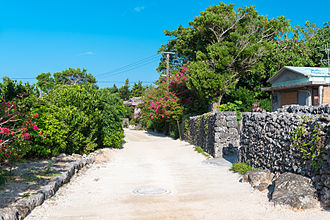 Taketomi Island - Street on Taketomi Island