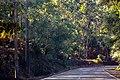 Tapada de Vale de Lobos. 10-18.jpg