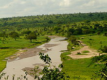 Tarangire River in Tarangire National Park