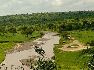 Tarangire River - Image: Tarangine (208)