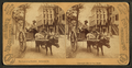 The Lightning Express. Savannah, Ga, by Barker, George, 1844-1894.png