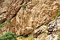 The Parthian rock-relief at Qimmat Merquli, Mt Piramagroon, Sulaymaniyah Governorate, Iraq. 1st century CE.jpg