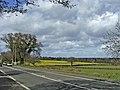 The Ridgeway, Enfield, with farmland - geograph.org.uk - 370982.jpg