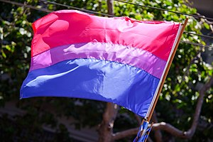 Bisexuality in the United States - The bisexual pride flag, created by bisexual activist Michael Page