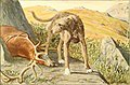 The book of dogs; an intimate study of mankind's best friend (1919) (20402963901).jpg