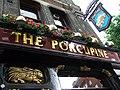 The porcupine itself - geograph.org.uk - 522814.jpg