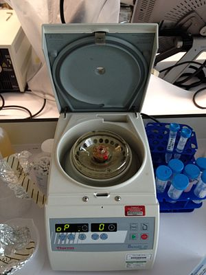 Laboratory centrifuge - A ThermoFisher laboratory bench-top centrifuge.