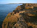 Tip of Luke's Point - geograph.org.uk - 585235.jpg