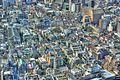 Tokyo (4143497976).jpg