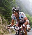 Tour de France 2012, peraud (14867423514).jpg