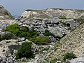 Tout Quarry - geograph.org.uk - 1343231.jpg