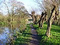 Towpath East of Stoke Lock - geograph.org.uk - 288874.jpg
