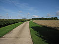 Track from Yen Hall Farm - geograph.org.uk - 1458389.jpg