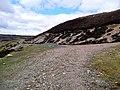 Track junction in Glen Tarken - geograph.org.uk - 761908.jpg