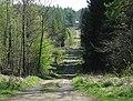 Track to Boys Grave car park - geograph.org.uk - 1266878.jpg