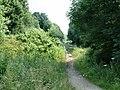 Trans Pennine Trail - geograph.org.uk - 1075404.jpg