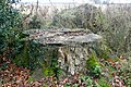 Tree stump - geograph.org.uk - 1105332.jpg