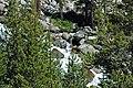 Tributary stream of Dana Fork (Yosemite National Park, California, USA) 1.jpg