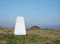 Trig Pillar, Manshead End - geograph.org.uk - 401666.jpg