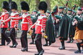 Trooping the Colour II.JPG