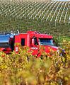 Truck in Vines (landscape)2.jpg