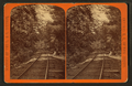 Two mile turn, Switchback Railroad, by Gates, G. F. (George F.) 2.png