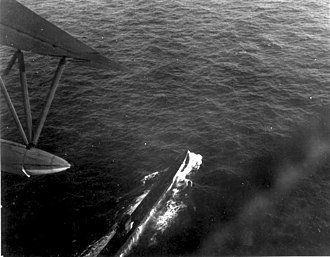 A German submarine under attack by Brazilian Air Force PBY Catalina, 31 July 1943 U-199Flyover.jpg