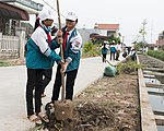 USAID supports tree planting in Nam Dinh Province (33189971031).jpg