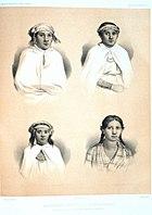 Urville-Araucanians