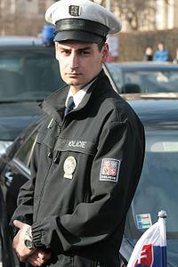 Václav Klaus a Ivan Gašparovič ve vile Tugendhat 2013-03-06 4864 policista.jpg