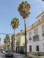 Vélez-Málaga street4.jpg