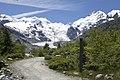 Vadret da Morteratsch - panoramio (49).jpg