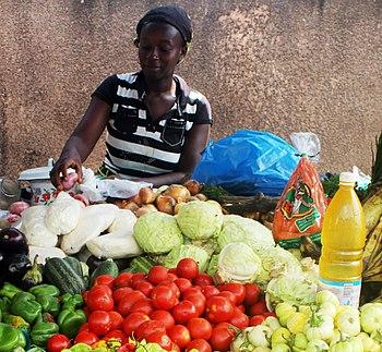 Ivorianer fortfarande pa flykt