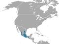 Veracruz Shrew area.png