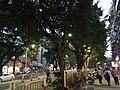 View in Nanshan, Shenzhen, Guangdong 12.jpg