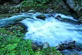 Vintgar Gorge (35679911991).jpg