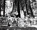 Visitors beneath the General Grant Tree, Sequoia and Kings Canyon National Parks, 1900. (c75f541c77914e089efa6bfcafef52e6).jpg