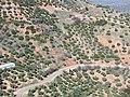 Vistas desde Chiclana de Segura 02.jpg