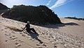 Wacky wipeouts sandboarding.jpg
