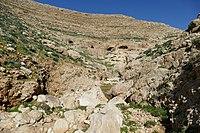 Wadi-Makukh-541.jpg