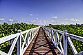 Walkway to the beach - panoramio.jpg