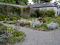 Walled garden at Enniscoe Estate - geograph.org.uk - 813050.jpg