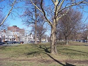 Walnut Park Historic District - Walnut Park, looking northwest toward Walnut Place