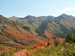 Wasatch Range Autumn.jpg